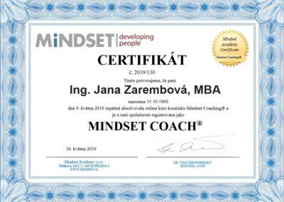 mindset.coach